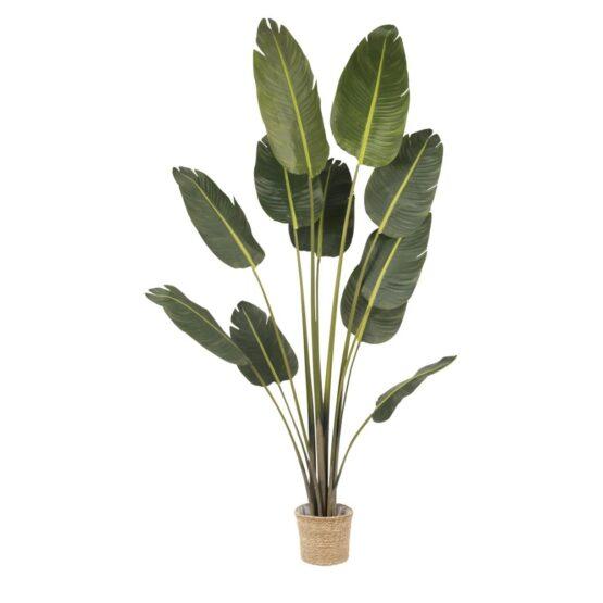 Ravinala Saka Artificial Plant in Pot