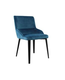 Burdell Dining Chairs (set of 2)